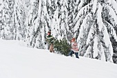 Young men carrying fir tree in snow