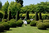 Trees and shrubs clipped into balls and low obelisks in park; woman walking amongst topiary in summer clothing