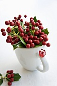 Holly berries in mug