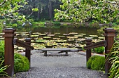 Lily pond and peaceful seating area with bench in botanical gardens (Oregon, USA)