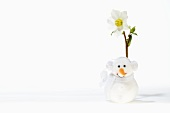 Hellebore and snowman
