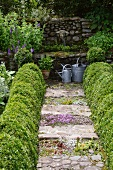 Rustic garden with topiary box hedges lining path and stone-walled fountain