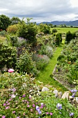 Sunny cottage garden with view of landscape
