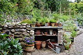 Half-height stone wall with plant pots on built-in shelves in front of vegetable patch