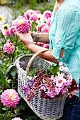 Frau sammelt Gartenblumen im Korb
