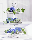 Blue hyacinth florets and tendrils of ivy leaves on cake stand