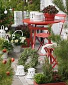 Terrace table and chairs surrounded by Christmas plant arrangements