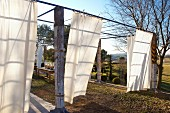 Pergola with wooden supports and white curtains in Mediterranean landscape