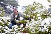 Man cutting Christmas tree in woods