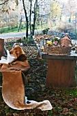 Rustic wooden table in autumnal garden
