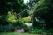 Rose trellis shaped like house with gable roof in cottage garden surrounded by tall trees