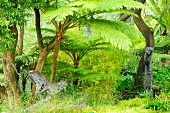 Wildkatzenfigur und Affenskulptur an Baumstamm in dschungelartigem Naturgarten