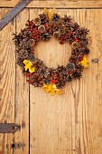 Autumnal wreath of pine cones, rowan berries and autumn leaves hanging on wooden door