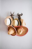 Panama hats and sombreros on pegs in shape of wild animal heads