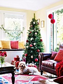 Christmas presents in front of decorated Christmas tree; maroon leather couch in foreground