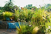 Mediterranean terrace with blooming ornamental grasses in blue wooden containers