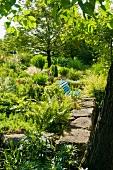 Blue bench immersed in a sunny, Mediterranean garden