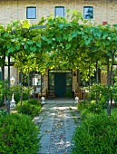 Path with vine covered pergola in front of the furnished terrace of a Mediterranean country home