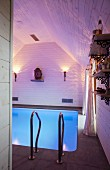 Swimming pool with atmospheric lighting, wood-clad walls and head of the Buddha on shelf as focal decorative element