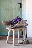 Clematis and campanula arranged in large piece of driftwood on wooden stool in vintage ambiance