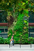 Living art - family on street in front of hotel facade with vertical garden in Paris