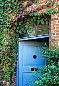 Front door painted pale blue with transom window in climber-covered brick facade