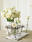 White narcissus in a glass and in a flower vase