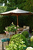 Summery mood with nostalgic flair: ball-shaped boxwood topiary in front of a patio with a sun umbrella and hedge