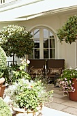 Summertime - view over potted plants of upholstered patio chairs in front of an arched doorway with glazed windows in a traditional villa