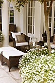 A grand villa - plant pots filled with white blooming flowers in front of brown wicker outdoor furniture on a terrace