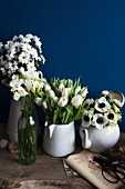 A variety of white flowers in full bloom in vintage containers in front of a blue wall