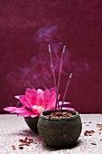 Räucherstäbchen stecken in Sand in einer Schale mit Rosenblütenblättern, im Hintergrund Blüte einer Blattkaktee
