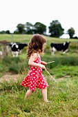 A Little Girl Walking Next to a Cow Pasture