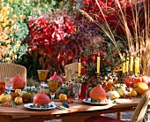 Autumnal patio table with squash, sea buckthorn, Chinese lanterns, rose hips and roses