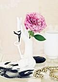Pinkfarbene Beetrose der Sorte Novalis in Vase in Form einer Porzellanhand