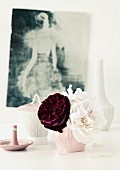 Dark purple rose 'Robert Le Diable' and white rose 'Eifelzauber' arranged in china bowl