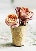 Roses of the variety 'Cubana' in golden beaker