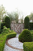 Topiary hedges and paved path in garden with wooden gate