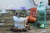 Anemones in a pot wrapped with newspaper in a small willow wreath, pansies under a glass dome