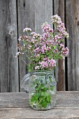 Flowering marjoram in preserving jar