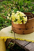 Posy of cowslips and hazel twigs in old wooden container on wooden table in garden