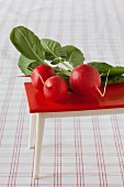 Radishes on red dolls' house table on checked tablecloth