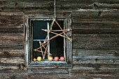 Stars hand-crafted from twigs in front of Advent arrangement of apples on window sill of wooden cabin