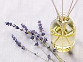 Fresh Lavender with a Jar of Oil and Diffuser Reeds
