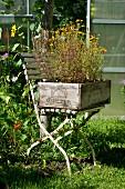 Stuhl mit alter Weinkiste als Blumenkiste