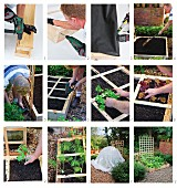 Making a square foot garden frame (raised vegetable bed with wooden grid and trellis)