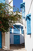 Typical blue and white house (Sidi Bou Said, Tunisia)
