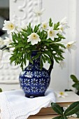 White anemones in blue ceramic jug