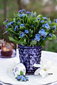 Easter posy of forget-me-nots