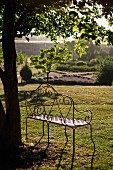 Seat with a view - delicate, metal bench against tree trunk with view of atmospheric, Mediterranean landscape